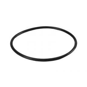 Уплотнительное кольцо Aquafilter FH10-20B